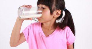 Anak yang Minum Susu Sapi Murni Berpeluang Lebih Rendah Mengalami Obesitas Ragam