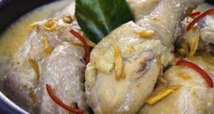 cara memasak opor ayam tanpa santan